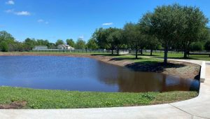 residential backyard pond construction
